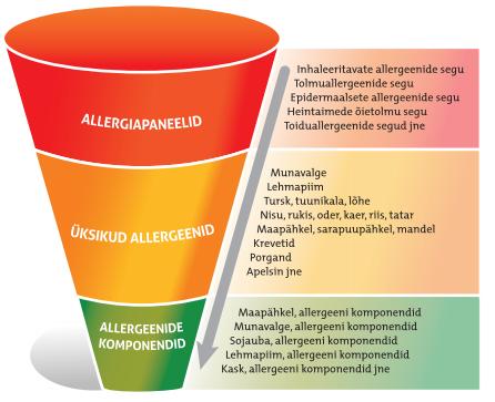 ascaris allergia